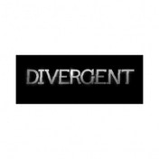 Divergent Movie Strategy Board Game