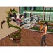 The Sims 2 University Game PC - Image 4