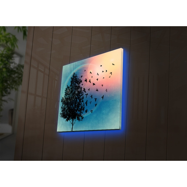 4040DACT-54 Multicolor Decorative Led Lighted Canvas Painting