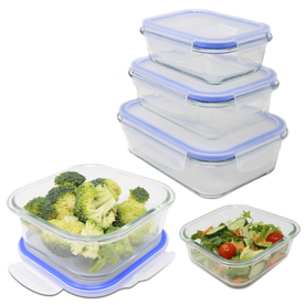 Set of 5 Assorted Glass Airtight Food Storage Containers | M&W