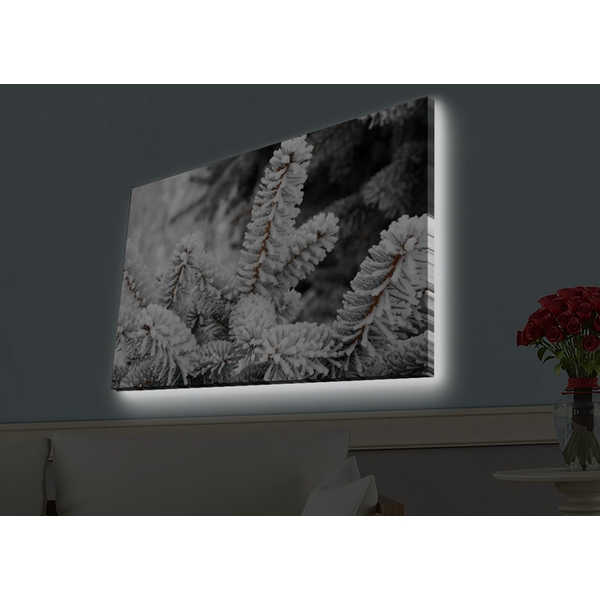 4570HDACT-027 Multicolor Decorative Led Lighted Canvas Painting