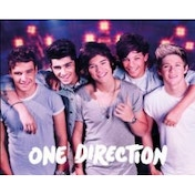 One Direction On Stage Mini Poster