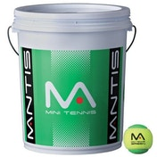 MANTIS Stage 1 Green Tennis Balls Bucket 6 Dozen