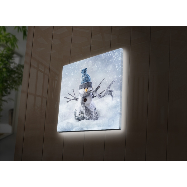4040DACT-29 Multicolor Decorative Led Lighted Canvas Painting