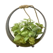 Faux Green Succulents in Round Iron Pot