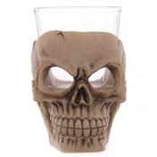 Glass and Resin Skull (Pack Of 6) Shot Glasses