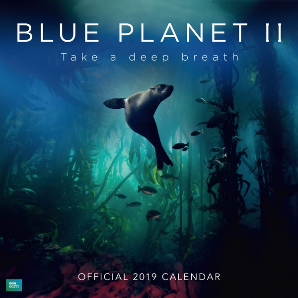 BBC Blue Planet Official 2019 Calendar - Square Wall Calendar Format