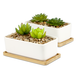 Ceramic Planter & Bamboo Base | M&W x2 Rectangular - Image 5