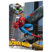Spider-man Swing 3D Poster