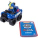 Paw Patrol Rescue Race (1 At random) - Image 7