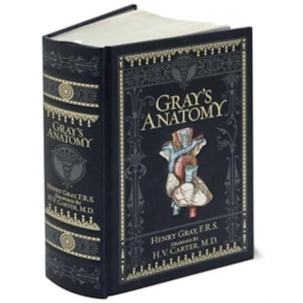 Gray's Anatomy (Barnes & Noble Omnibus Leatherbound Classics) by Henry Gray (Leather / fine binding, 2010)