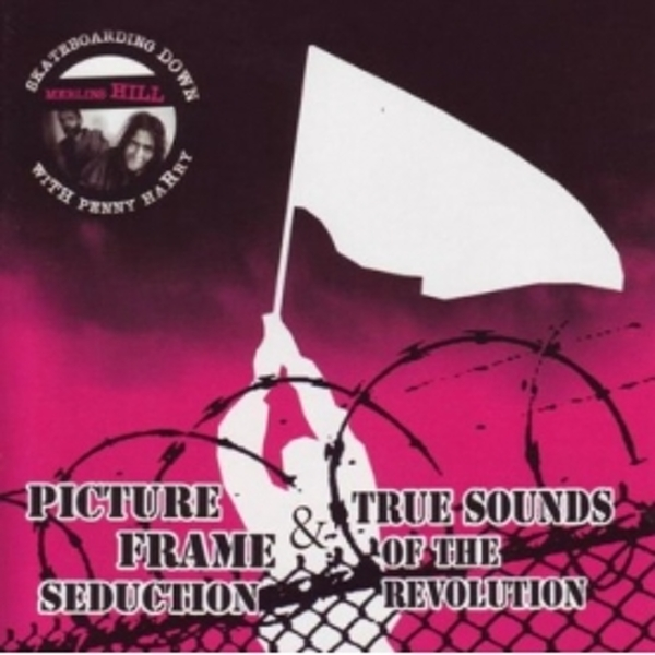 Picture Frame Seduction & True Sound Of The Revolution Skateboarding Down Merlins Hill With Penny Harry CD