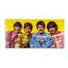 The Beatles ‎– Sgt. Pepper's Lonely Hearts Club Band LP Vinyl - Image 3
