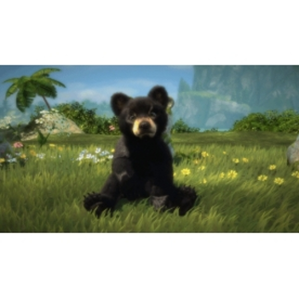 Kinectimals Now With Bears Game Xbox 360 - Image 2