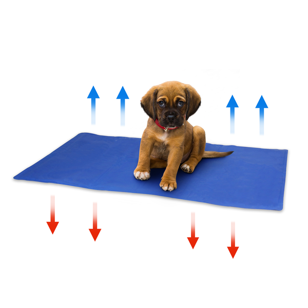 Pet Cooling Mat | Pukkr IHB Australia (NEW)