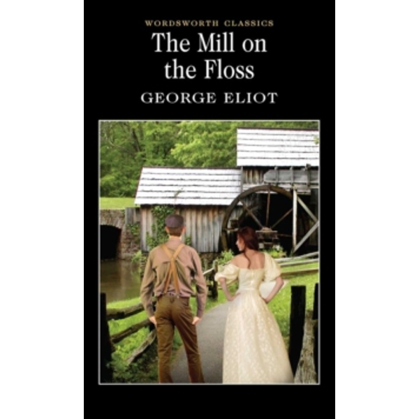The Mill on the Floss by George Eliot (Paperback, 1993)