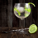 Gin Glasses - Set of 4 | M&W - Image 4