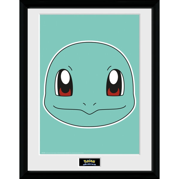 Pokemon Squirtle Face Collector Print