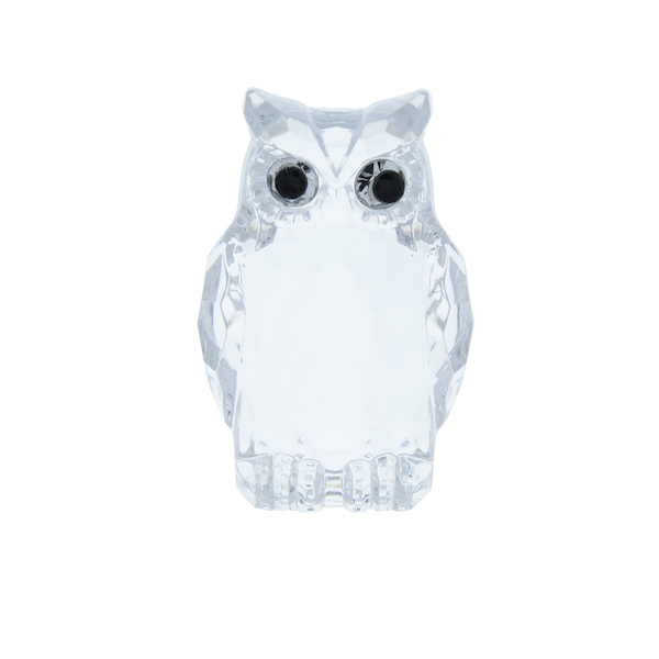 Small Acrylic Owl Two Tone Clear Ornament