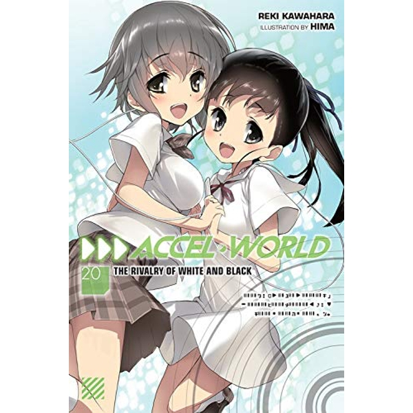 Accel World, Vol. 20 (light novel)