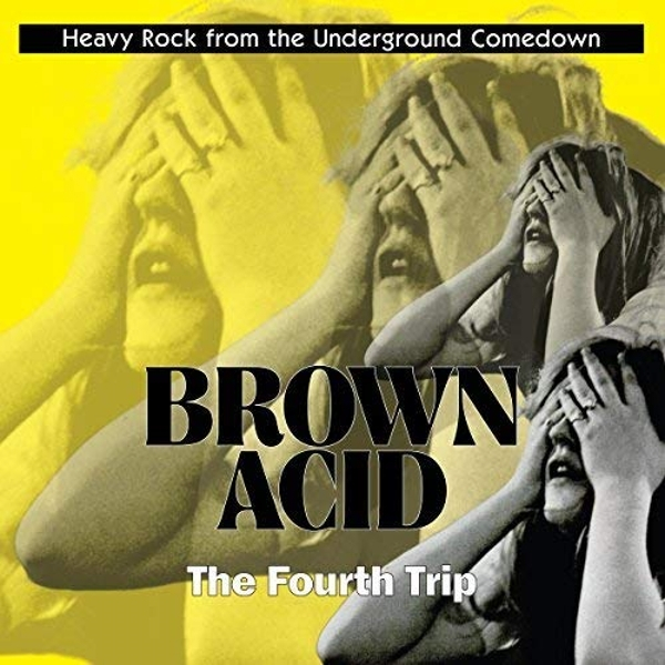 Various Artists - Brown Acid: The Fourth Trip Vinyl