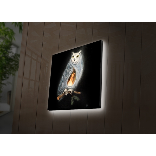 2828DACT-53 Multicolor Decorative Led Lighted Canvas Painting