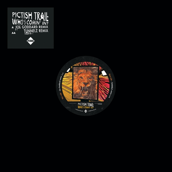 Pictish Trail – Who's Comin' In? Vinyl