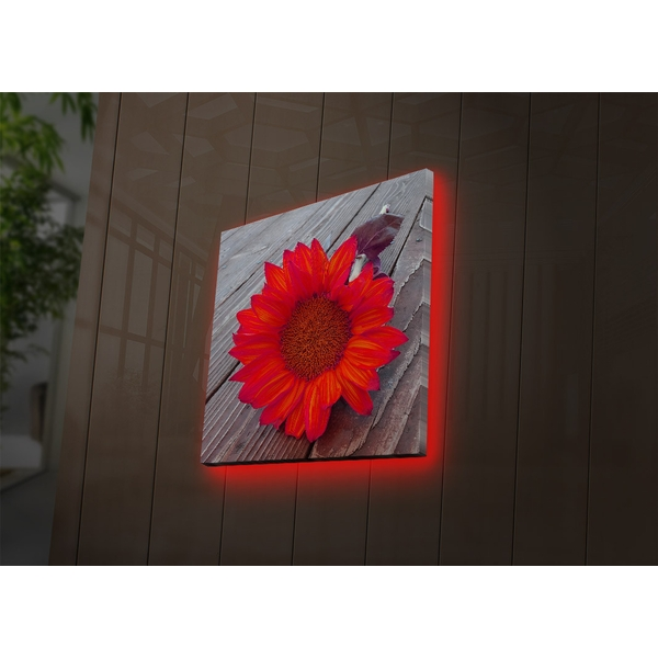 4040DACT-50 Multicolor Decorative Led Lighted Canvas Painting