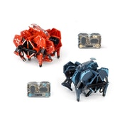 HEXBUG Battle Ground Tarantula Single - Random Colour