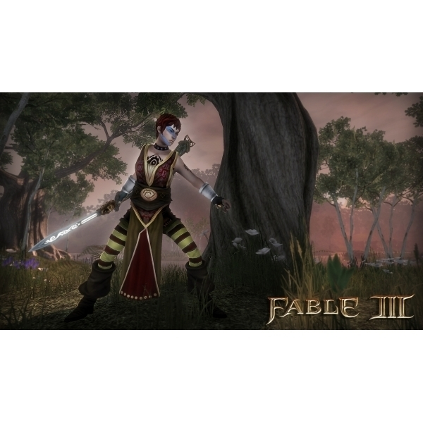 Pre-Owned Fable III 3 Game Xbox 360 Used - Good - Image 3