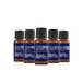 Mystic Moments Citrus (Pack 2) Essential Oils Gift Starter Pack - Image 2
