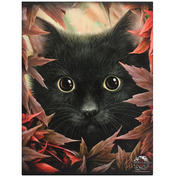 Small Autumn Cat Canvas Picture by Linda Jones