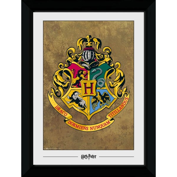 Harry Potter Hogwarts Collector Print