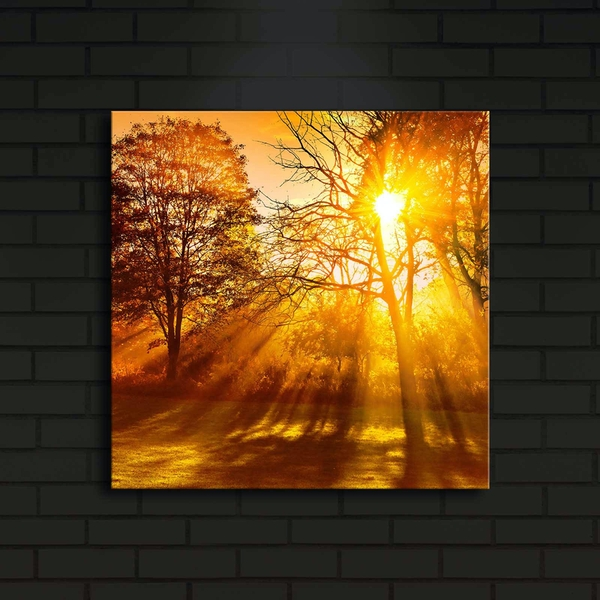 4040?ACT-10 Multicolor Decorative Led Lighted Canvas Painting