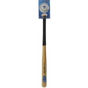 Aresson Big Hitter Mini Bat and Ball Set