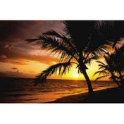 Fellowes Palm Moods Mouse Mat