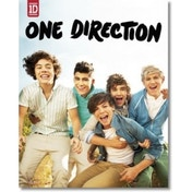 One Direction Album Mini Poster