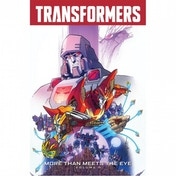 Transformers More Than Meets The Eye: Volume 10