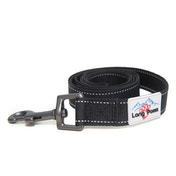 Long Paws Urban Trek Reflective Webbing Leash Large Black