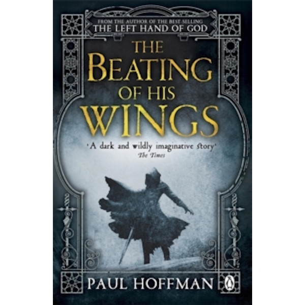 The Beating of his Wings by Paul Hoffman (Paperback, 2014)