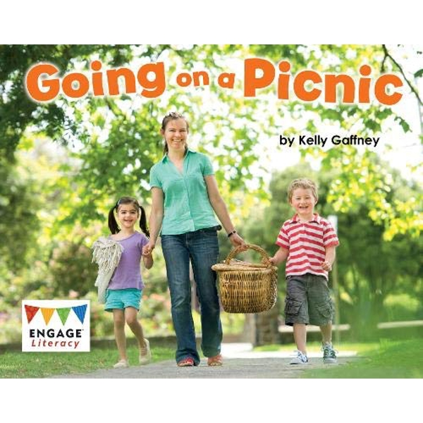 Going on a Picnic  Paperback / softback 2018