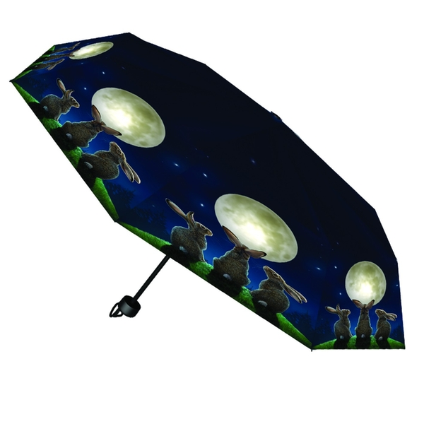 Moon Shadows Umbrella