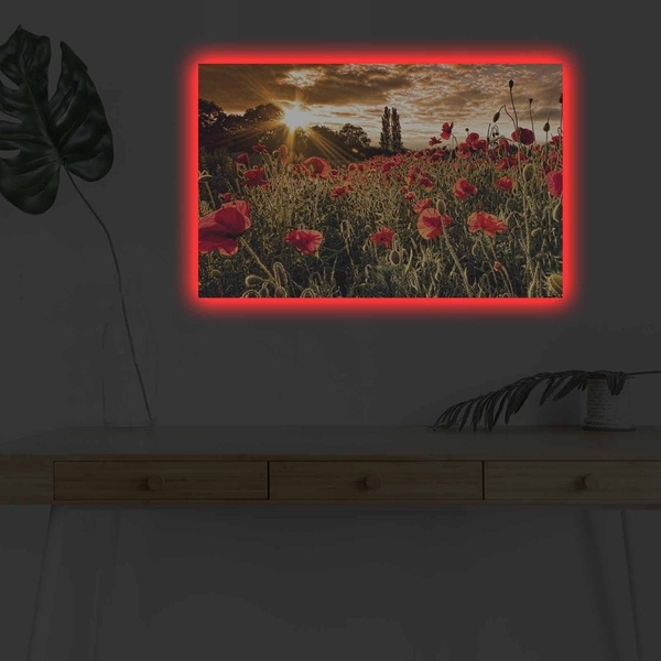 4570DHDACT-083 Multicolor Decorative Led Lighted Canvas Painting
