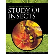 Borror and DeLong's Introduction to the Study of Insects by Norman Johnson, Charles A. Triplehorn (Hardback, 2004)