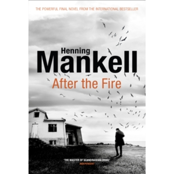 After the Fire Paperback