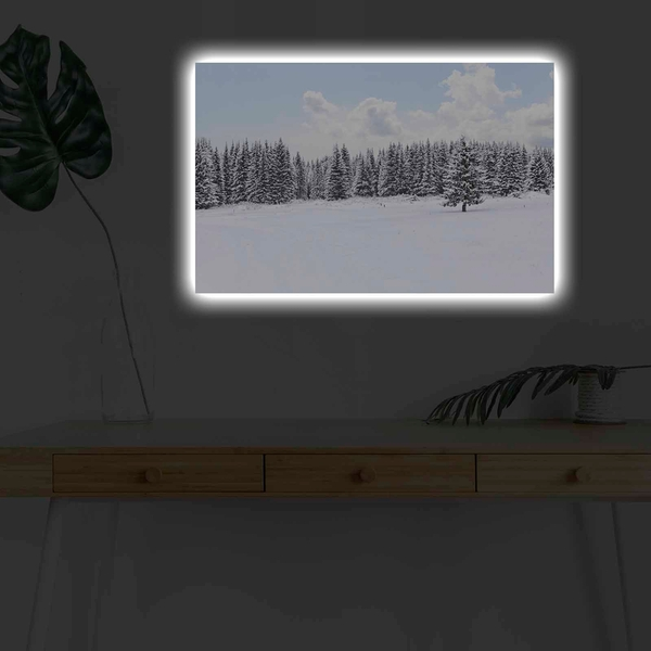 4570KARDACT - 015 Multicolor Decorative Led Lighted Canvas Painting