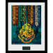 Harry Potter House Flags Framed Collector Print - Image 2