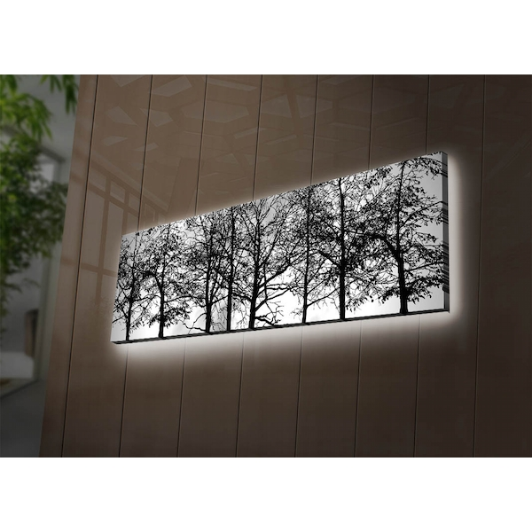 3090DACT-72 Multicolor Decorative Led Lighted Canvas Painting