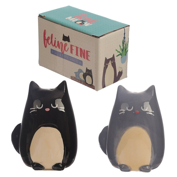 Cute Cat Design Salt and Pepper Set