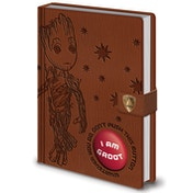 Guardians of the Galaxy Vol. 2 - I Am Groot Official Audio Notebook
